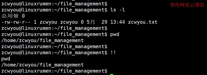Linux双感叹号的作用