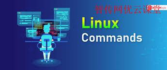 10个高效的Linux管理命令