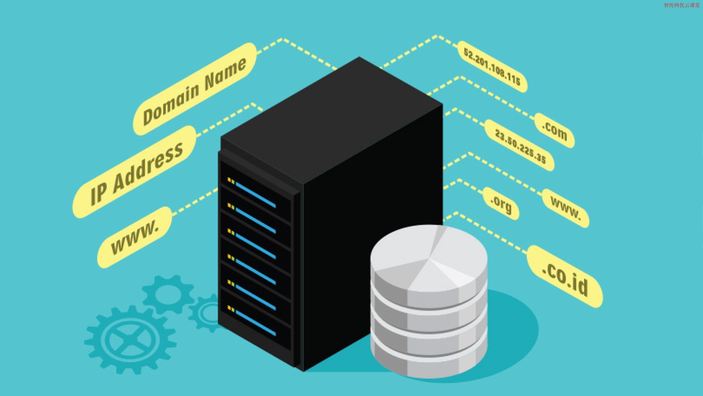 如何在Linux中查看DNS服务器设置