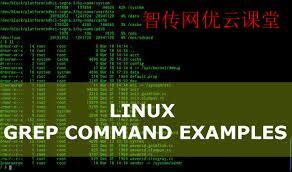 面向开发人员的10个grep命令实用示例