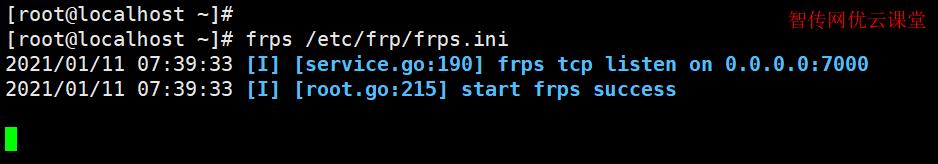 测试frp服务器