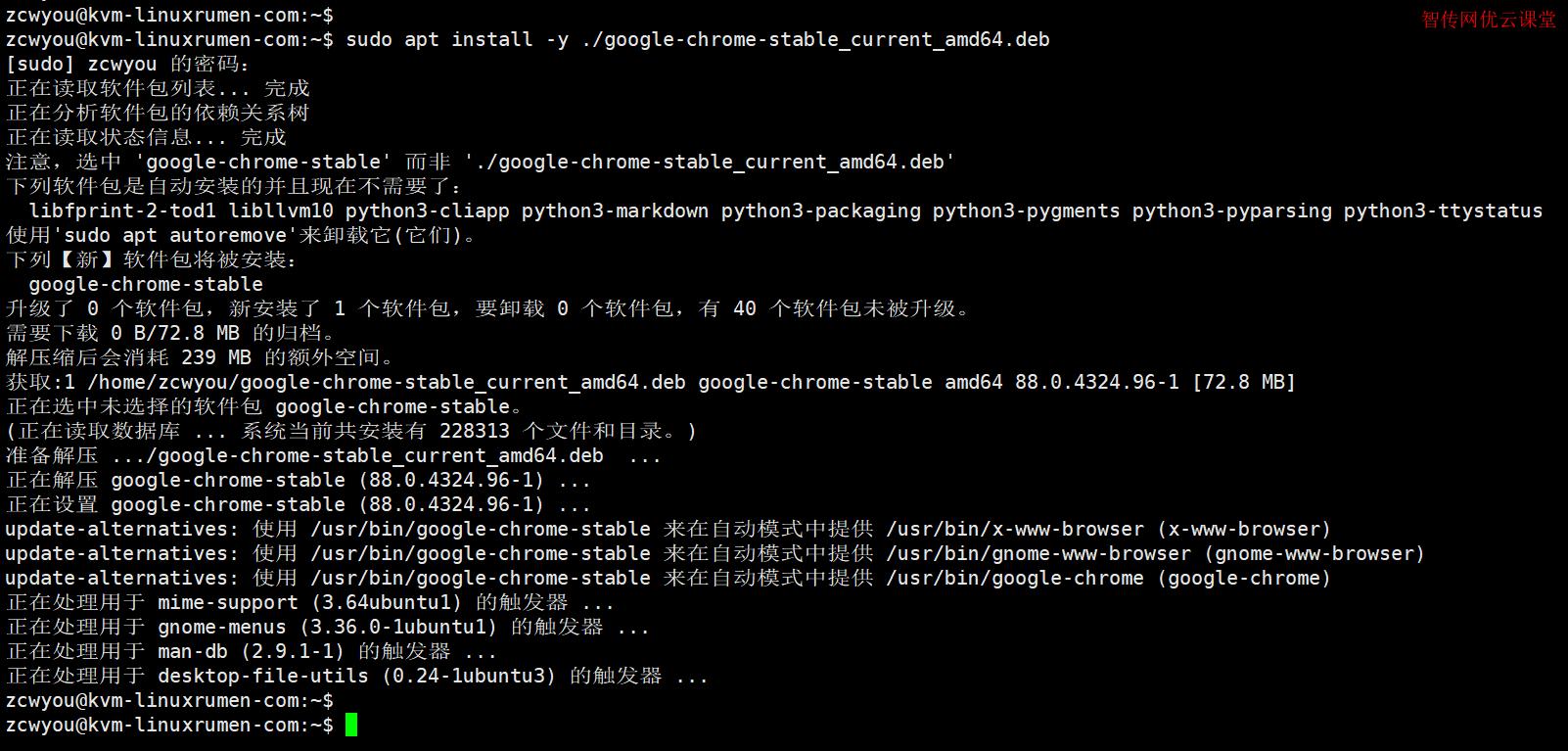 在Ubuntu 20.04 Linux系统下载和安装Google Chrome