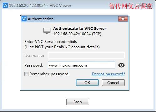 在VNC客户端上输入VNC服务器的IP或域名以及端口号