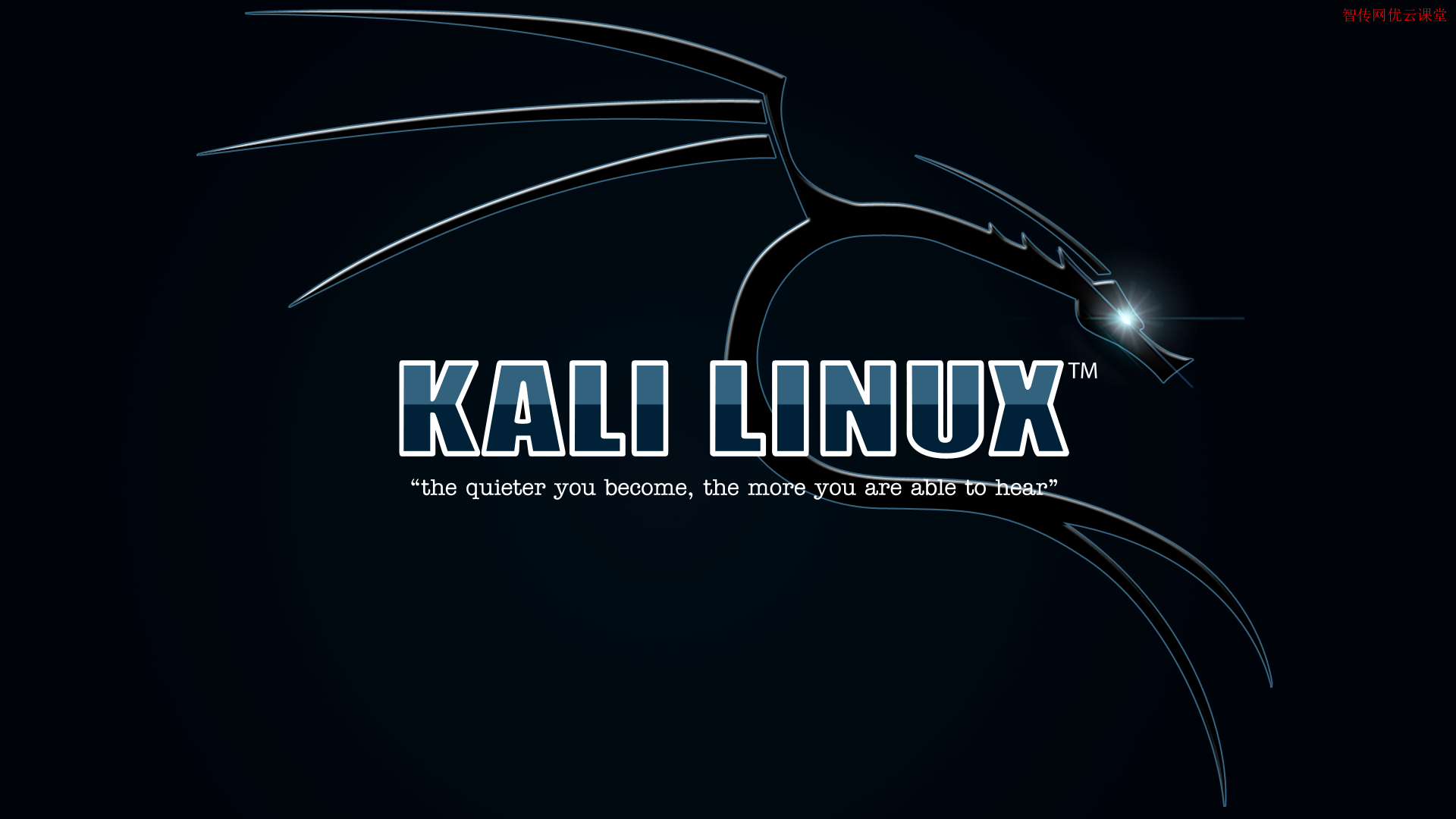 Kali Linux系统最受黑客喜爱的工具