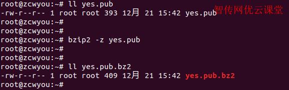 linux压缩bzip2文件