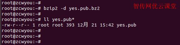 Linux解压bzip2文件