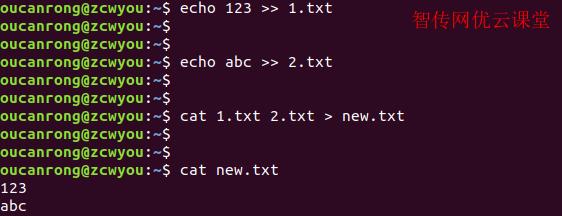 使用cat命令查看文件内容