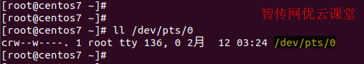 查看/dev/pts/0这个Linux文件的权限