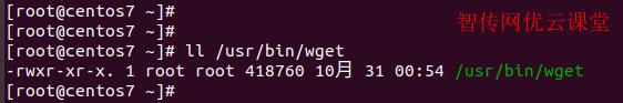 查看/usr/bin/wget这个Linux文件的权限