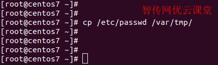 Linux复制一个文件到指定目录