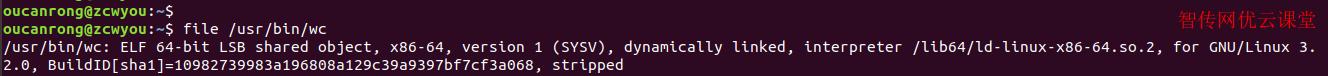 file命令查看二进制文件类型
