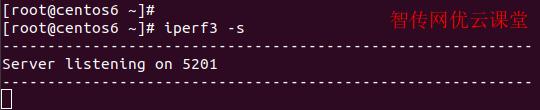Linux启动iperf3网速测试工具