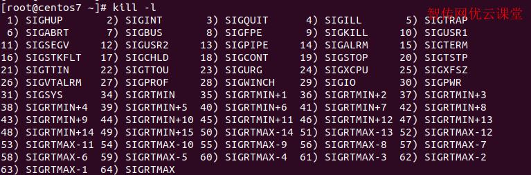 linux查看kill选项