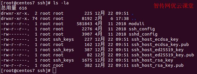 Linux使用ls命令列出文件和目录信息