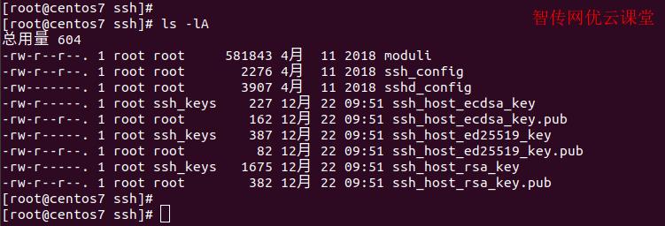 Linux使用ls命令查看文件和目录信息