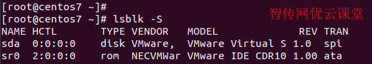 使用lsblk命令只查看SCSI设备磁盘分区