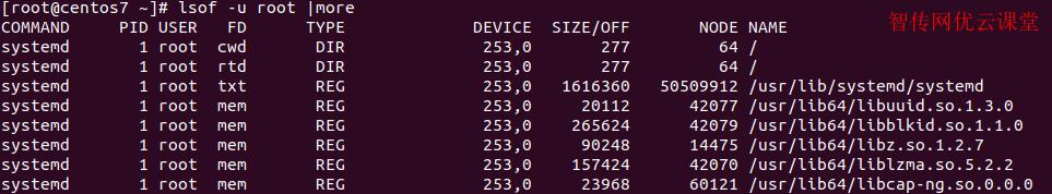 linux列出某个用户打开的文件信息