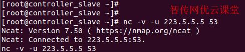 linux使用netcat测试服务器的UDP端口