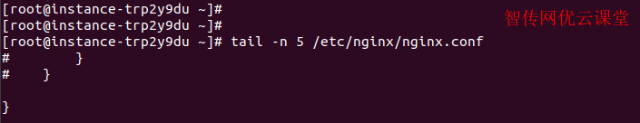 Linux tail命令指定行数查看文本内容