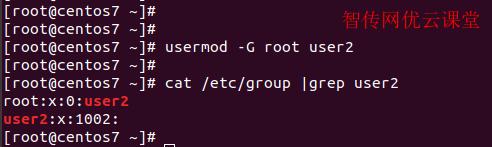 linux添加用户附属组