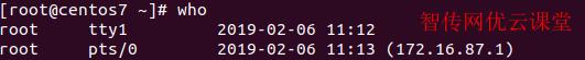 linux显示当前登录系统的用户