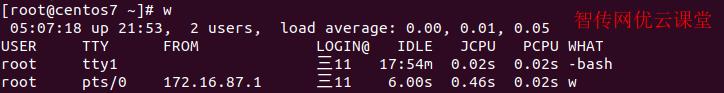 w命令查询正在登录linux系统的用户