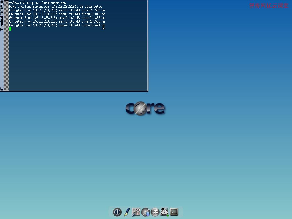 使用Tiny Core Linux终端工具测试网络