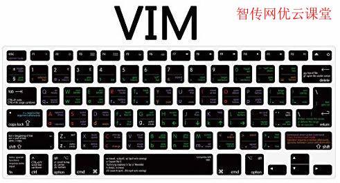 vi或vim快速搜索快捷键